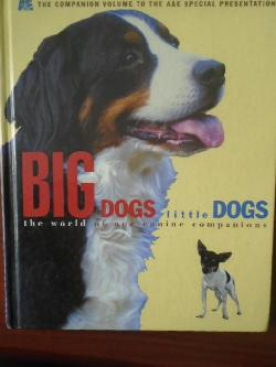 Big Dogs Little Dogs: The World of Our Canine Companions,