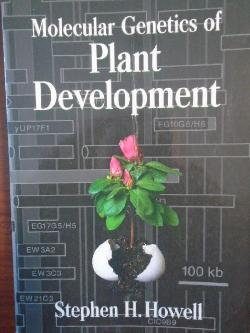 Molecular Genetics of Plant Development , Stephen H. Howell